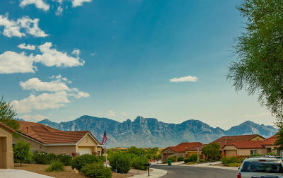 Oro Valley Single Family Home Active Contingent: 13957 N Willow Bend Drive