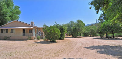 Tucson Single Family Home For Sale: 39779 S Sengspiration Drive