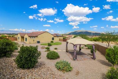 Tucson Single Family Home For Sale: 5500 S Black Falls Drive