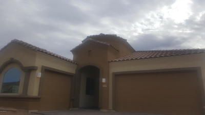 Pima County Single Family Home For Sale: 5539 W Jade Rock Place