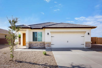 Pima County Single Family Home For Sale: 11539 W Fayes Glen Drive