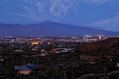 Tucson Residential Lots & Land For Sale: 5320 W Chaos Canyon Lane