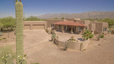 Tucson Single Family Home For Sale: 12751 E Camino Ancho