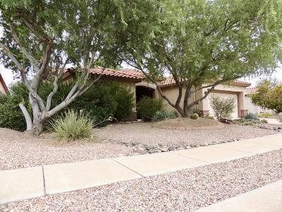 Continental Ranch Sunflower Single Family Home For Sale: 9519 N Twinkling Shadows Way