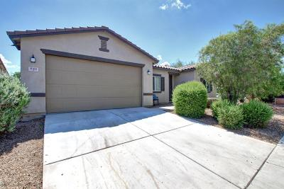 Single Family Home For Sale: 841 W Paseo Celestial