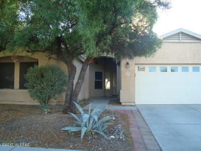 Tucson Single Family Home For Sale: 8282 N Equator Loop
