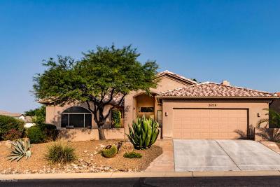 Saddlebrooke Single Family Home For Sale: 36118 S Mesa Ridge Drive
