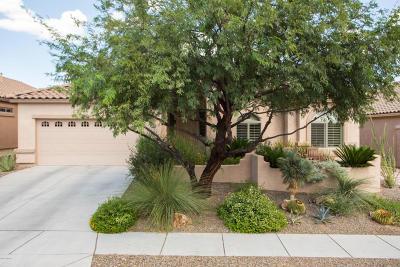 Oro Valley Single Family Home For Sale: 638 W Adagio Lane
