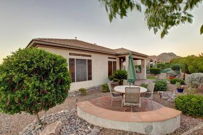 Single Family Home For Sale: 5135 Desert Eagle Ci W