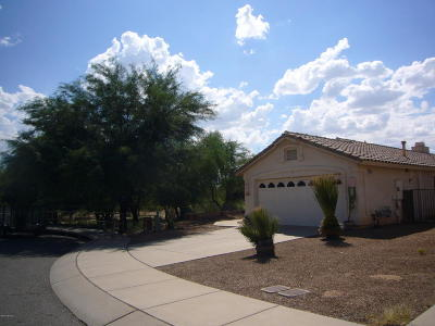 Tucson Single Family Home For Sale: 9083 N Ironwood Bluffs Lane