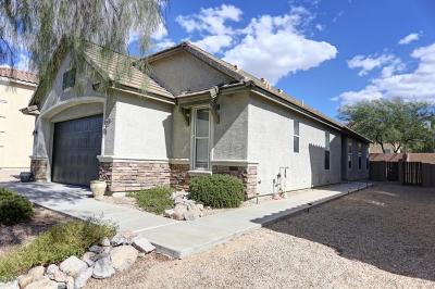 Tucson Single Family Home For Sale: 4715 W Lindenthal Lane
