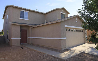Pima County Single Family Home For Sale: 3715 E Desert Wash Court