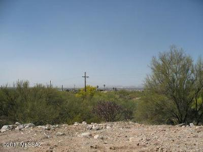Tucson Single Family Home For Sale: 4270 N Swan Road