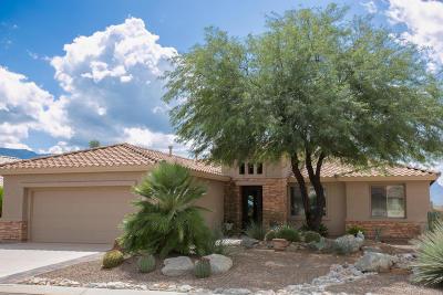 Tucson Single Family Home For Sale: 61835 E Border Rock Road