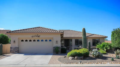 Tucson Single Family Home For Sale: 61759 E Shortcut Avenue