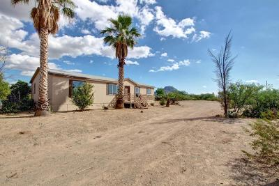 Tucson Single Family Home For Sale: 6250 W Michigan Street