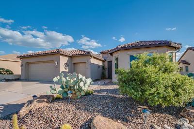 Saddlebrooke Single Family Home For Sale: 62715 E Border Rock Road