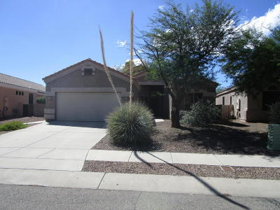 Pima County, Pinal County Single Family Home Active Contingent: 2419 N Creek Vista Drive
