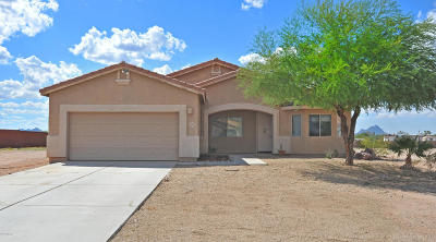 Marana Single Family Home For Sale: 10119 N Avra Vista Drive