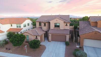 Sahuarita Single Family Home For Sale: 725 W Camino Tunera