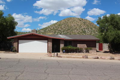 Single Family Home For Sale: 1358 S Desert Crest Drive