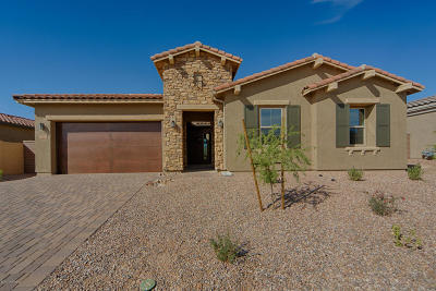 Pima County Single Family Home For Sale: 13647 N Meadowhawk Lane