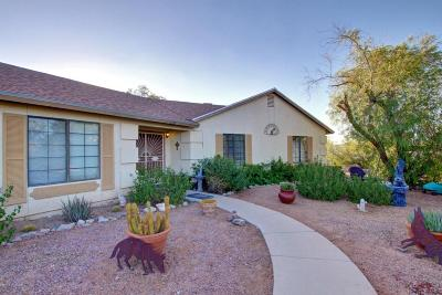 Tucson Single Family Home For Sale: 2761 N Tomas Road