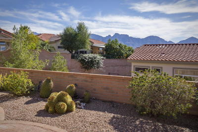 Oro Valley Single Family Home For Sale: 1102 E Versailles Drive