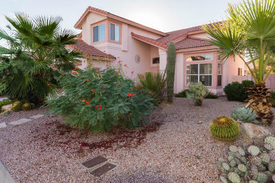 Tucson Single Family Home For Sale: 3576 W Sky Ridge Loop