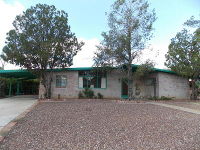 Single Family Home For Sale: 1309 S Avenida Sirio