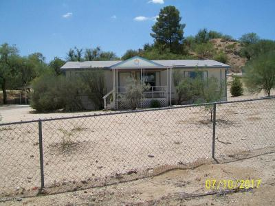 Tucson Single Family Home For Sale: 4124 E Trotter Place