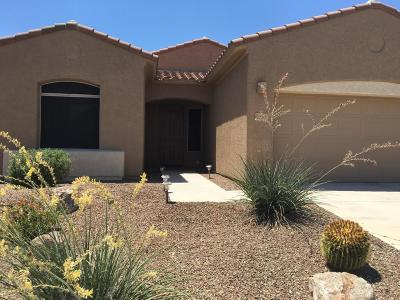 Marana Single Family Home For Sale: 12591 N Gentle Rain Drive