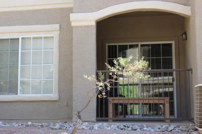 Tucson Single Family Home For Sale: 1500 E Pusch Wilderness Drive #9102