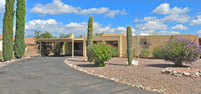 Pima County, Pinal County Single Family Home For Sale: 1701 S Skyview Place