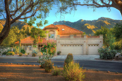 Tucson Single Family Home For Sale: 6349 E Calle De Mirar