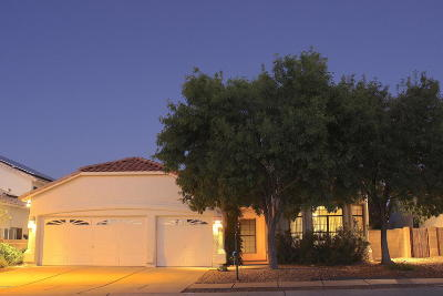 Pima County, Pinal County Single Family Home For Sale: 859 S Rincon Rising Road