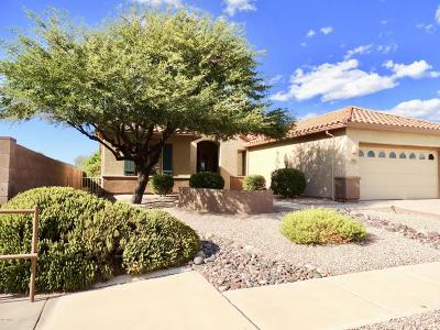 Tucson Single Family Home For Sale: 7980 W Blue Heron Way