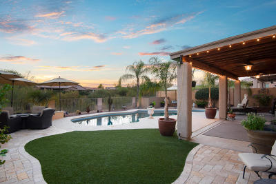 Oro Valley Single Family Home Active Contingent: 13695 N Bushwacker Place