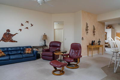 Tucson Single Family Home For Sale: 495 N Placita Mira