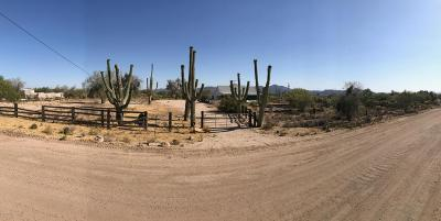 Tucson Residential Lots & Land For Sale: 3981 W Flying Diamond Drive