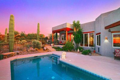 Tucson Single Family Home For Sale: 6901 W El Camino Del Cerro