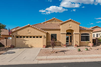 Marana Single Family Home For Sale: 5030 W Wild Burro Spring Drive