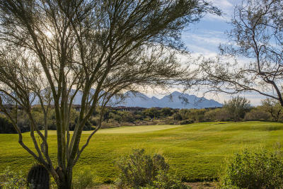 Oro Valley Single Family Home For Sale: 655 W Vistoso Highlands Drive #141