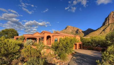 Tucson Single Family Home For Sale: 1661 E Crimson Canyon Place