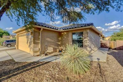 Pima County, Pinal County Single Family Home For Sale: 7372 E Weeping Willow Drive
