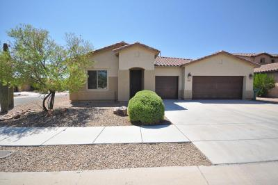 Pima County Single Family Home For Sale: 4341 W Windsor Ranch Place