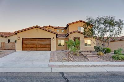 Pima County Single Family Home For Sale: 11400 N Adobe Village Drive