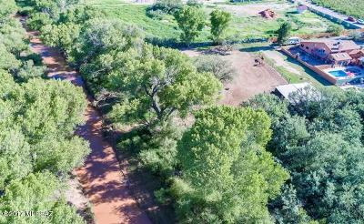 Cochise County Single Family Home For Sale: 3123 N Thistle Road