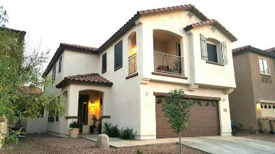 Sahuarita Single Family Home For Sale: 518 E Calle De Ocaso