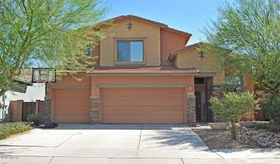 Tucson Single Family Home For Sale: 9117 S Crows Nest Court